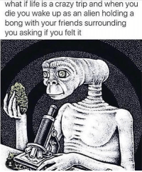 @toptree this meme made my head explode: what if life is a crazy trip and when you  die you wake up as an alien holding a  bong with your friends surrounding  you asking if you felt it @toptree this meme made my head explode