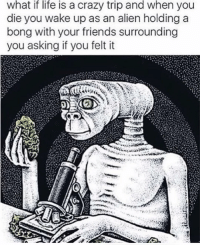 @toptreemedia has the most ridiculous memes I've ever seen: what if life is a crazy trip and when you  die you wake up as an alien holding a  bong with your friends surrounding  you asking if you felt it @toptreemedia has the most ridiculous memes I've ever seen