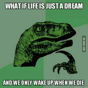 Life, Death, and Com: WHAT IF LIFE IS JUSTA DREAM  AND WE ONLY WAKE UP WHEN WE DIE  MEMEFUL.COM That would explain what would happen after death
