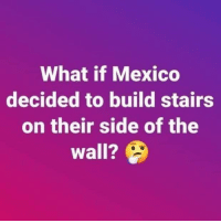 what if: What if Mexico  decided to build stairs  on their side of the  wall?