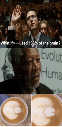 Anaconda, Brains, and Work: What if Mods used 100% of the brain?  tvolut  Huma  IS