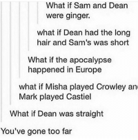 Memes, Europe, and Hair: What if Sam and Dean  were ginger.  what if Dean had the long  hair and Sam's was short  What if the apocalypse  happened in Europe  what if Misha played Crowley and  Mark played Castiel  What if Dean was straight  You've gone too far Listening to empty arena + rain versions of songs they're so relaxing - spn Supernatural spnfamily jaredpadalecki jensenackles mishacollins sam dean winchesters castiel destiel fandom ship otp