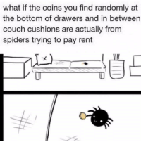 Thanks Spider-Bro!: what if the coins you find randomly at  the bottom of drawers and in between  couch cushions are actually from  spiders trying to pay  rent Thanks Spider-Bro!