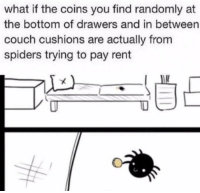 Couch, Spiders, and Rent: what if the coins you find randomly at  the bottom of drawers and in between  couch cushions are actually from  spiders trying to pay rent