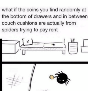 and then you kill them: what if the coins you find randomly at  the bottom of drawers and in between  couch cushions are actually from  spiders trying to pay rent and then you kill them