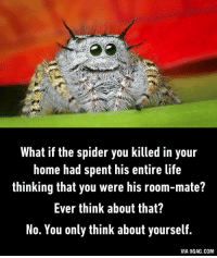 A spider roommate can be your best buddy.  9GAG Mobile App: www.9gag.com/mobile?ref=9fbp  http://9gag.com/gag/avnRGzb?ref=fbp: What if the spider you killed in your  home had spent his entire life  thinking that you were his room-mate?  Ever think about that?  No. You only think about yourself.  VIA 9GAG.COM A spider roommate can be your best buddy.  9GAG Mobile App: www.9gag.com/mobile?ref=9fbp  http://9gag.com/gag/avnRGzb?ref=fbp