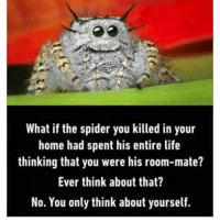 Oh no spider bro: What if the spider you killed in your  home had spent his entire life  thinking that you were his room-mate?  Ever think about that?  No. You only think about yourself. Oh no spider bro