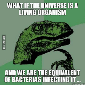 Because why not ?: WHAT IF THE UNIVERSEIS A  LIVING ORGANISM  AND WE ARE THE EQUIVALENT  OF BACTERIAS INFECTING IT  MEMEFUL.COM Because why not ?