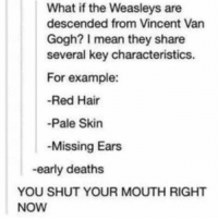 Who gave you the righT????? Woe I'm such a bad friend: What if the Weasleys are  descended from Vincent Van  Gogh? mean they share  several key characteristics  For example:  Red Hair  Pale Skin  Missing Ears  -early deaths  YOU SHUT YOUR MOUTH RIGHT  NOW Who gave you the righT????? Woe I'm such a bad friend