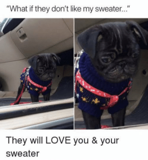 """Love, Memes, and 🤖: """"What if they don't like my sweate...""""  They will LOVE you & your  Sweater https://t.co/7kgtvME7uw"""