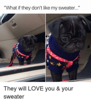 """Love, Via, and Will: """"What if they don't like my sweater..""""  They will LOVE you & your  Sweater They will trust me via /r/wholesomememes https://ift.tt/2ybX7DO"""