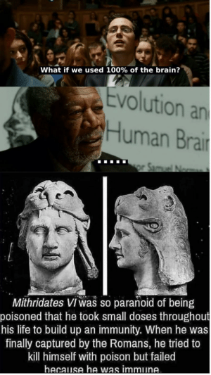 Life, Reddit, and Brain: What if we used 100% of the brain?  Evolution an  Human Brair  Mithridates VI Was so parañoid of being  poisoned that he took small doses throughout  his life to build up an immunity. When he was  finally captured by the Romans, he tried to  kill himself with poison but failed  hecause he was immune. Outstanding move