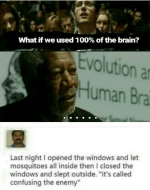 "100% brain usage: What if we used 100% of the brain?  volution a  Human Bra  Last night I opened the windows and let  mosquitoes all inside then I closed the  windows and slept outside. ""it's called  confusing the enemy 100% brain usage"