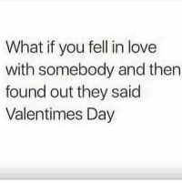 Love, Memes, and 🤖: What if you fell in love  with somebody and then  found out they said  Valentimes Day I'll be devastated! ✌😂😂
