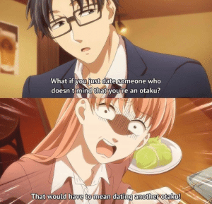 Anime_irl: What if you iust date someone who  doesn't mind that you're an otaku?  That would have to mean dating another otaku!  mean dating amother Anime_irl