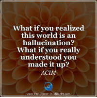 """Memes, Ups, and World: What if you realized  this world is an  hallucination?  hat if you really  understood you  made it up?  ACIM  www.The-Course-In-Miracles.com Seriously ask yourself... """"What if""""?"""