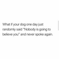 "Omg omg omg: What if your dog one day just  randomly said ""Nobody is going to  believe you"" and never spoke again. Omg omg omg"