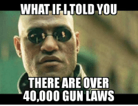 Laws: WHAT IFI TOLD VOU  THERE ARE OVER  40,000 GUN LAWS Laws