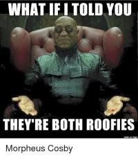 Morpheus: WHAT IFI TOLD YOU  THEY'RE BOTH ROOFIES  Morpheus Cosby