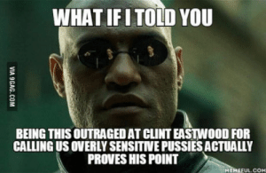 I mean, its kinda true: WHAT IFITOLD YOU  BEING THIS OUTRAGED AT CLINT EASTWOOD FOR  CALLING US OVERLY SENSITNVE PUSSIES ACTUALLY  PROVES HIS POINT  MEMEFUL.COM I mean, its kinda true