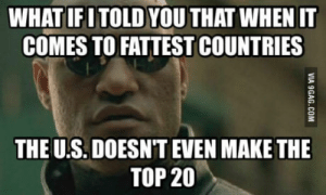 Google, Top, and Make: WHAT IFITOLD YOU THAT WHEN IT  COMES TO FATTEST COUNTRIES  THE U.S. DOESN'T EVEN MAKE THE  TOP 20 Google: US 27th Fattest Country