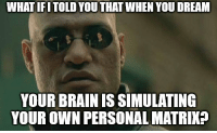 Brain, Personal, and Dream: WHAT IFITOLD YOU THAT WHEN YOU DREAM  YOUR BRAIN IS SIMULATING  YOUR OWN PERSONAL MATRIK?