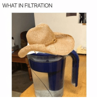 life is fucking weird and sometimes i think about shit too long and i'm just like yo what the fuck is even going on: WHAT IN FILTRATION life is fucking weird and sometimes i think about shit too long and i'm just like yo what the fuck is even going on