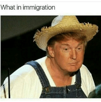 Wot in tarnation memes dankmemes autism cringe jew offensivememes buns bleach purge harambe terrorist trump thug shamwow clinton hood funny spongebob: What in immigration Wot in tarnation memes dankmemes autism cringe jew offensivememes buns bleach purge harambe terrorist trump thug shamwow clinton hood funny spongebob