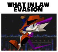 When you're a jewel thief and really good at hide-and-seek.: WHAT IN LAW  EVASION When you're a jewel thief and really good at hide-and-seek.