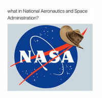 Memes, Oscars, and Im Happy: what in National Aeronautics and Space  Administration? Fantastic beasts won best costume design for the oscars and I'm happy