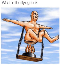 <p>Flying Titan</p>: What in the flying fuck <p>Flying Titan</p>