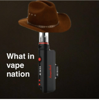 This meme is so annoying but you guys like it so here you go: What in  Vape  nation This meme is so annoying but you guys like it so here you go