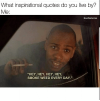 "All day everyday 😁😂 🍁Follow ➡ @weedsavage 🍁 📷: @wolfiememes: What inspirational quotes do you live by?  Me:  @wolfiememes  ""HEY, HEY, HEY, HEY,  SMOKE WEED EVERY DAY."" All day everyday 😁😂 🍁Follow ➡ @weedsavage 🍁 📷: @wolfiememes"