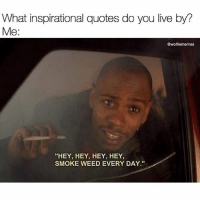 "all day erryday 💨 @wolfiememes: What inspirational quotes do you live by?  Me:  @wolfiememes  ""HEY, HEY, HEY, HEY,  SMOKE WEED EVERY DAY.""  tu all day erryday 💨 @wolfiememes"