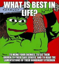 Memes, 🤖, and Lamenting: WHAT IS BEST IN  LIFE?  TO MEME YOURENEMIES TO SEE THEM  DRIVEN TO THEIR SAFESPACES AND TO HEAR THE  LAMENTATIONS OFTHEIRNONBINARYOTHERKIN