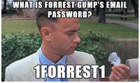 memes: WHAT IS FORREST GUMP'S EMAIL  PASSWORD?  1 FORREST1  made on inngu