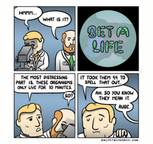 lolsupport:  Slap in the face: WHAT IS IT?  L00 E  THE MOST DISTRESSINGIT TOOK THEM 99 TO  SPELL THAT OUT.  PART IS, THESE ORGANISMS  ONLY LIVE FOR 10 MINUTES.  AH. So YOU KNOW  THEY MEAN IT.  So?  RUDE.  Co  paintraincomic.com lolsupport:  Slap in the face