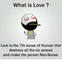 Twitter: BLB247 Snapchat : BELIKEBRO.COM belikebro sarcasm meme Follow @be.like.bro: What is Love?  Love is the 7th sense of Human that  destroys all the six senses  and make the person Non-Sense. Twitter: BLB247 Snapchat : BELIKEBRO.COM belikebro sarcasm meme Follow @be.like.bro