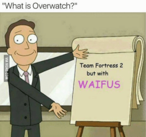 """Truths about Overwatch: """"What is Overwatch?""""  Team Fortress 2  but with  WAIFUS Truths about Overwatch"""