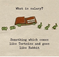 Rabbit, What Is, and Tortoise: What is salary  Something which comes  Like Tortoise and goes  like Rabbit
