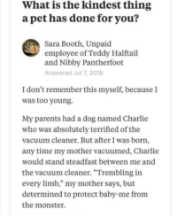 "Charlie the great❤️: What is the kindest thing  a pet has done for you?  Sara Booth, Unpaid  employee of Teddy Halftail  and Nibby Pantherfoot  Answered Jul 7, 2016  I don't remember this myself, because I  was too young.  My parents had a dog named Charlie  who was absolutely terrified of the  vacuum cleaner. But after I was born,  any time my mother vacuumed, Charlie  would stand steadfast between me and  the vacuum cleaner. ""Trembling in  every limb,"" my mother says, but  determined to protect baby-me from  the monster Charlie the great❤️"