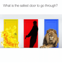 Memes, Blue, and What Is: What is the safest door to go through? Which door would you pick!? Yellow, red, or blue!? 😱🤔