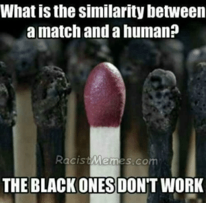 match and human - racist memes: What is the similarity between  a match and a human?  RacistMemes,co  THE BLACK ONES DON'T WORK match and human - racist memes