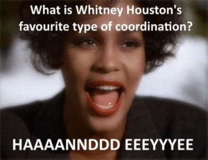 What Is, Terrible Facebook, and Why: What is Whitney Houston's  favourite type of coordination? Why Whitney