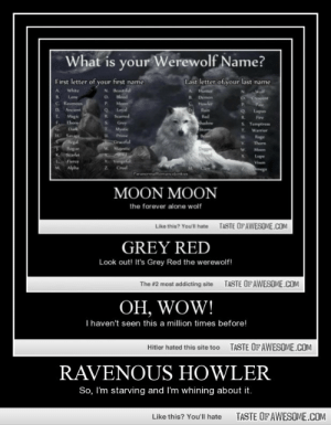 Ravenous howlerhttp://omg-humor.tumblr.com: What is your Werewolf Name?  Last letter of your last name  First letter of your first name  N Beautiful  O slood  P.  white  Hunter  Walf  O Crescent  B.  Lone  Demon  C. Ravenos  Howler  Moon  Loyal  P.  D.  Ancient  Rain  Lupun  Scarred  Magic  Ehony  R.  Red  R.  Fire  Shadow  Storm  Grey  Mystic  S. Temptress  T.  Dark  Warrior  H Sage  egal  Rogue  Prime  Rage  Graceful  W. Majestic  V.  Thorn  Moon  Scarlet  Lupe  Visen  Vengel  Ferce  Alpha  Cruel  M.  Dmega  Paranormallomancefunkies  MOON MOON  the forever alone wolf  TASTE OF AWESOME.COM  Like this? You'l hate  GREY RED  Look out! It's Grey Red the werewolf!  TASTE OFAWESOME.COM  The #2 most addicting site  OH, WOW!  T haven't seen this a million times before!  TASTE OF AWESOME.COM  Hitler hated this site too  RAVENOUS HOWLER  So, I'm starving and I'm whining about it.  TASTE OF AWESOME.COM  Like this? You'll hate Ravenous howlerhttp://omg-humor.tumblr.com