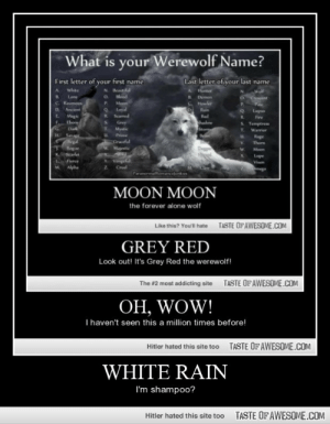 White Rainhttp://omg-humor.tumblr.com: What is your Werewolf Name?  Last letter of your last name  First letter of your first name  N Beautiful  O slood  P.  white  Hunter  Walf  O Crescent  B.  Lone  Demon  C. Ravenos  Howler  Moon  Loyal  P.  D.  Ancient  Rain  Lupun  Scarred  Magic  Ehony  R.  Red  R.  Fire  Shadow  Storm  Grey  Mystic  S. Temptress  T.  Dark  Warrior  H Sage  egal  Rogue  Prime  Rage  Graceful  W. Majestic  V.  Thorn  Moon  Scarlet  Lupe  Visen  Vengel  Ferce  Alpha  Cruel  M.  Dmega  Paranormallomancefunkies  MOON MOON  the forever alone wolf  TASTE OF AWESOME.COM  Like this? You'l hate  GREY RED  Look out! It's Grey Red the werewolf!  TASTE OFAWESOME.COM  The #2 most addicting site  OH, WOW!  T haven't seen this a million times before!  TASTE OF AWESOME.COM  Hitler hated this site too  WHITE RAIN  I'm shampoo?  TASTE OFAWESOME.COM  Hitler hated this site too White Rainhttp://omg-humor.tumblr.com
