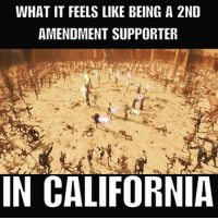 . ✅ Double tap the pic ✅ Tag your friends ✅ Check link in my bio for badass stuff - usarmy 2ndamendment soldier navyseals gun flag army operator troops tactical sniper armedforces k9 weapon patriot marine usmc veteran veterans usa america merica american coastguard airman usnavy militarylife military airforce libertyalliance: WHAT IT FEELS LIKE BEING A 2ND  AMENDMENT SUPPORTER  IN CALIFORNIA . ✅ Double tap the pic ✅ Tag your friends ✅ Check link in my bio for badass stuff - usarmy 2ndamendment soldier navyseals gun flag army operator troops tactical sniper armedforces k9 weapon patriot marine usmc veteran veterans usa america merica american coastguard airman usnavy militarylife military airforce libertyalliance
