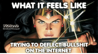Funny, Memes, and Tgif: WHAT IT FEELS LIKE  TRYING TO DEFLECT BULLSHIT  ON THEAINTERNET <p>Chucklesome memes  Our TGIF collection of funny pics  PMSLweb </p>