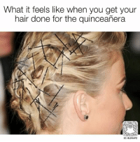 Memes, Hair, and Quinceanera: What it feels like when you get your  hair done for the quinceañera  SC: BLSNAPZ This is exactly what it feels like! 😂 @beinglatino😂 LatinasBeLike LatinaProblems LatinaProbs HispanicsBeLike LatinasareBeautiful LatinoPride BeingLatino BeLatino LatinosBeLike LatinoProblems LatinoProbs HispanicProblems