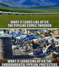 America, Facebook, and Instagram: WHAT IT LOOKS LIKE AFTER  THE PIPELINE COMES THROUGH  WHAT IT LOOKS LIKE AFTER THE  ENVIRONMENTAL PIPELINE PROTESTERS Not big in the news right now, but the Keystone pipeline isn't the issue. It's the protesters. The pipeline didn't even touch Native American land for goodness sakes 😂 keystone trumpmemes liberals libbys democraps liberallogic liberal maga conservative constitution presidenttrump resist stupidliberals merica america stupiddemocrats donaldtrump trump2016 patriot trump yeeyee presidentdonaldtrump draintheswamp makeamericagreatagain trumptrain triggered CHECK OUT MY WEBSITE🌐 thetypicalliberal.net Add me on Snapchat and get to know me. Don't be a stranger: thetypicallibby Partners: @theunapologeticpatriot 🇺🇸 @too_savage_for_democrats 🐍 @thelastgreatstand 🇺🇸 @always.right 🐘 @keepamerica.usa ☠️ @republicangirlapparel 🎀 @drunkenrepublican 🍺 TURN ON POST NOTIFICATIONS! Make sure to check out our joint Facebook - Right Wing Savages Joint Instagram - @rightwingsavages